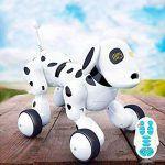 Perro Robot para Niños Buddy, de RC Tecnic
