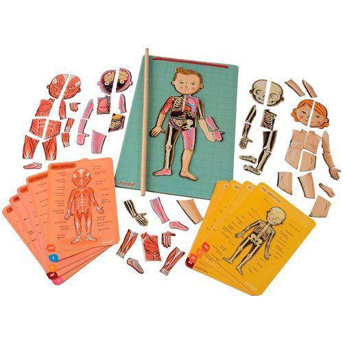 1. Bodymagnet, Juego de Anatomía Magnético, de Janod